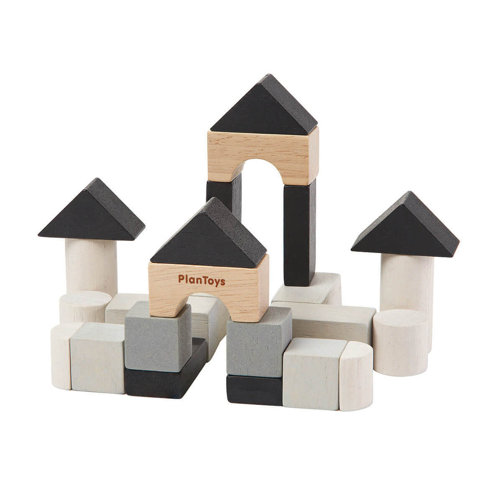 Mini Construction Set by PlanToys - Junior Edition