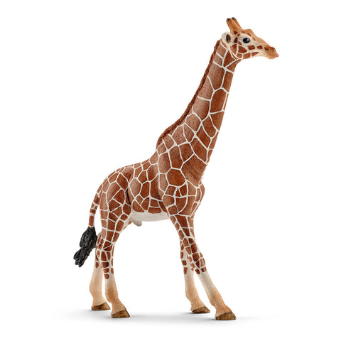 Male Giraffe by Schleich