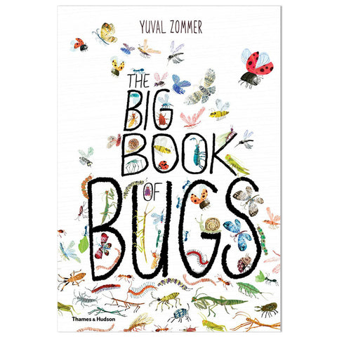 The Big Book of Bugs by Yuval Zommer & Barbara Taylor - Junior Edition
