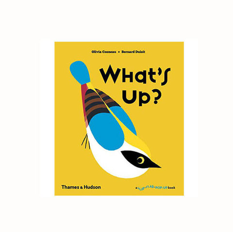 What's Up? by Olivia Cosneau & Bernard Duisit - Junior Edition