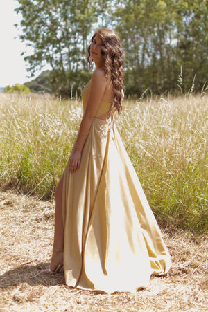 Gold & Glam Dress