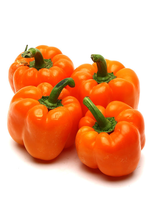 Capsicum Orange Fresh / per kg