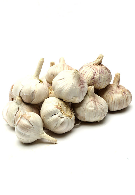 Garlic Fresh / per kg