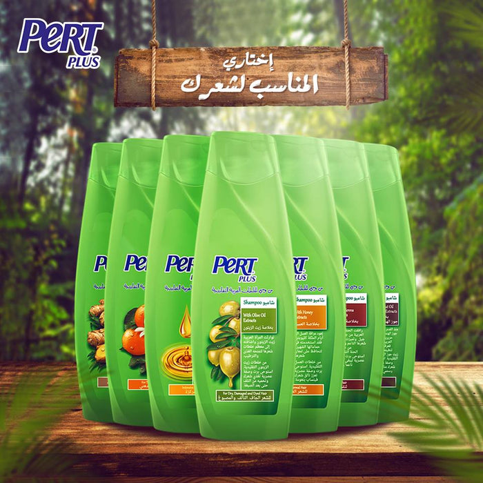PERT PLUS Ginger Extracts Shampoo 600 ml - Talabac