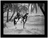 Johnny Weissmuller Riding a Black and White Horse in a Classic Movie Scene High Quality Photo
