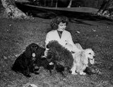 Katharine Hepburn Seated on Grass with Her Dogs Premium Art Print
