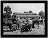 Gene Autry Posed with Horses High Quality Photo