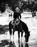 Gene Autry Riding a Horse Drinking Water Premium Art Print