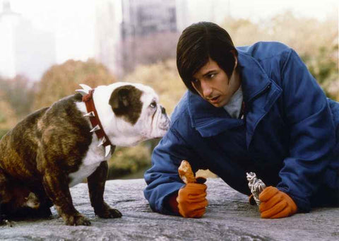 Adam Sandler Excerpt from Little Nicky Movie High Quality Photo
