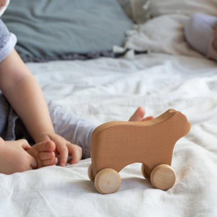 Wooden Bear Push Toy