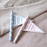 Baby Gender Reveal Mini Flags