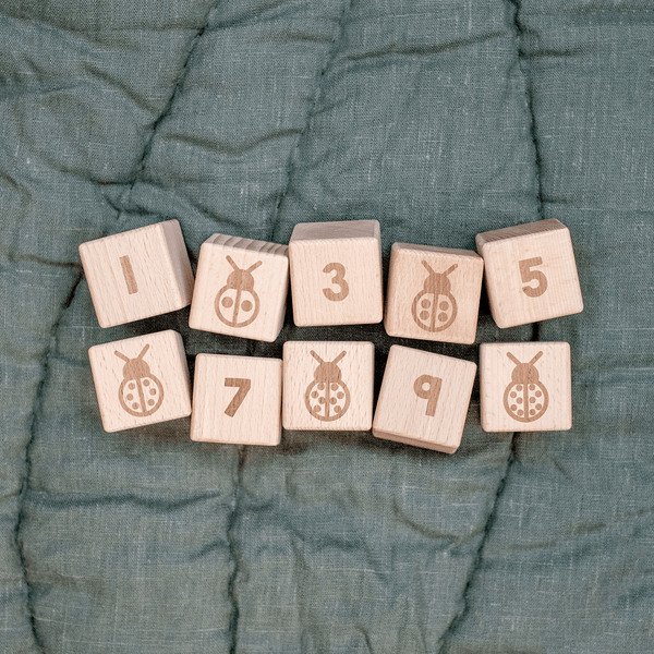 1-10 Wooden Number Blocks