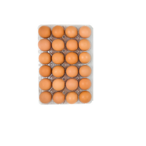 Organic Brown Eggs Grade Aa (24 Count ) 19 Dairy