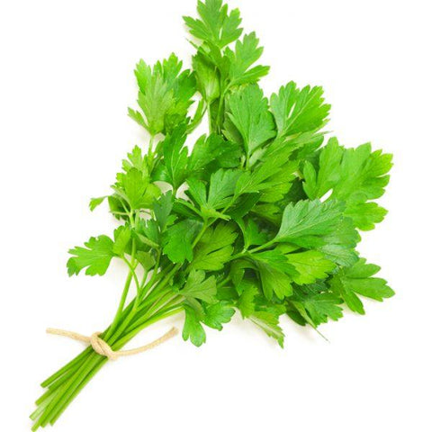 Coriander Leaves (1 Small Bundle) 18 Vegetables