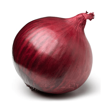 Red Onion (1 Piece) 18 Vegetables