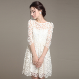 Design Long Sleeve Round Neck Lace Dress