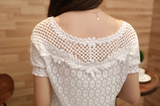 Short-Sleeved Embroidered Lace Blouse
