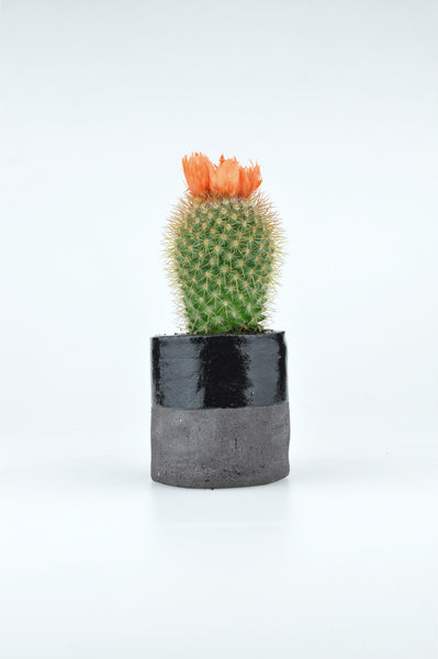 Mini Cactus Pot Black Clay by louise madzia 1