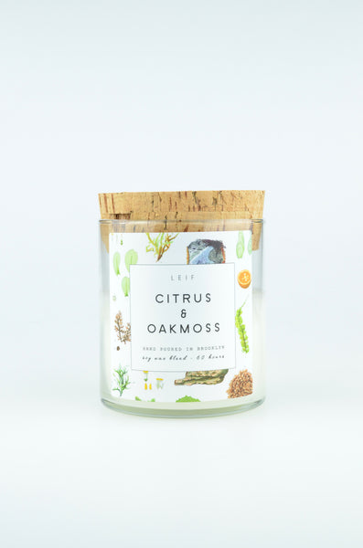Botanist Candle | Citrus & Oakmoss