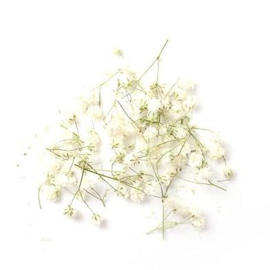 Flowergram Card - Baby's Breath