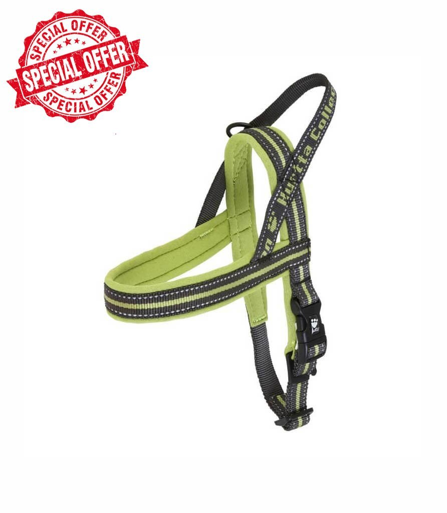 Outdoors Padded Harness