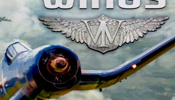 Iron Wings PC Game Steam CD Key