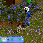 The Sims 3: Pets PC Game CD Origin Key - Screenshot 3