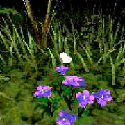 Yumemi Yataki no Monogatari Sega Mega CD Game - Screenshot 1