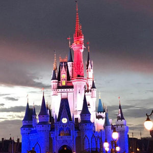 Magic Kingdom Firework Viewing Tips