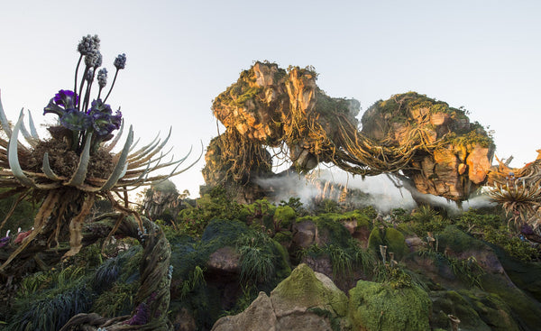 Pandora World of Avatar Opening Secrets at Disney's Animal Kingdom