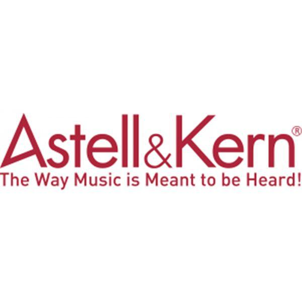 Astell & Kern AK10 OTG Android Cable