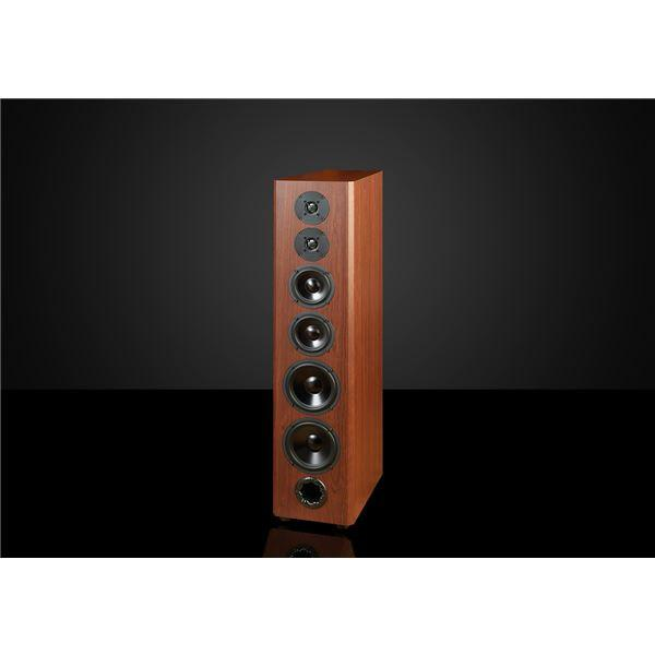 Bryston Model A2 Loudspeaker Real Wood