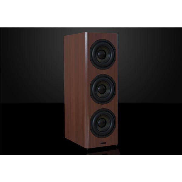Bryston Model T Subwoofer