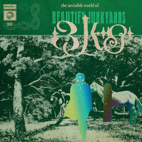 Beautify Junkyards - The Invisible World Of Beautify Junkyards (LP) - NEW