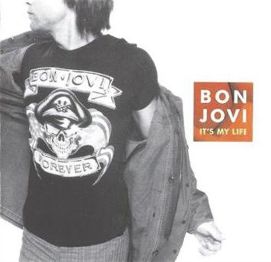 Bon Jovi - It's My Life (CD, Maxi, Enh) - USED