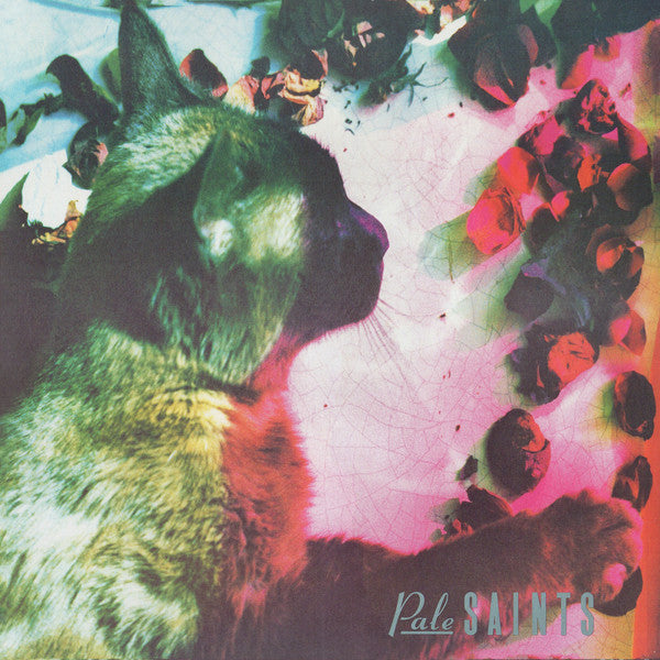Pale Saints - The Comforts Of Madness 30th Anniversary Re:Masters (LP, Album) - NEW
