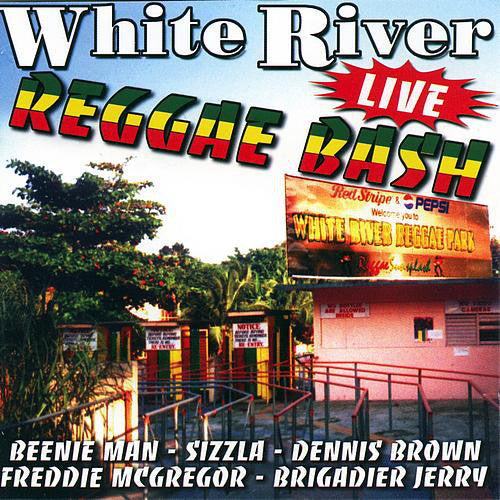Various - White River Reggae Bash Volume 1 (CD, Album) - USED