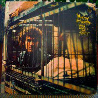 Murray McLauchlan - Song From The Street (LP, Album) - USED
