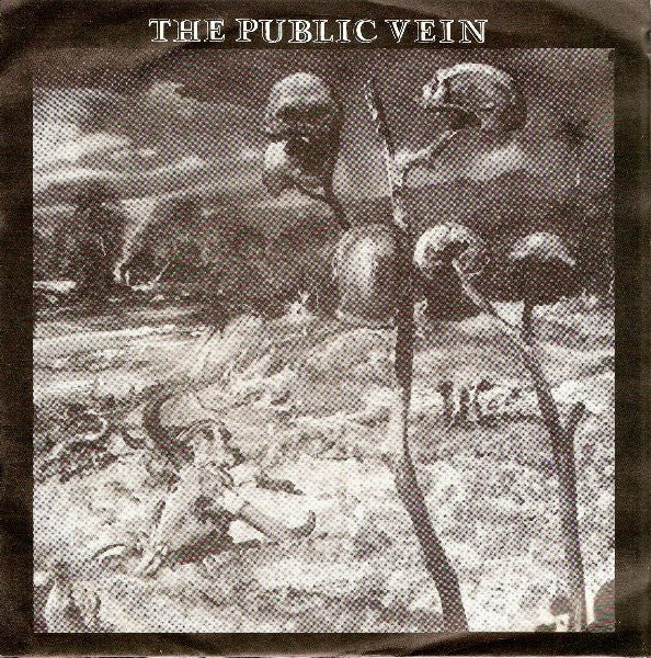 "The Public Vein - Carry On (7"") - USED"