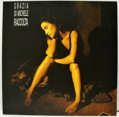 Grazia Di Michele - Raccolta (LP) - USED