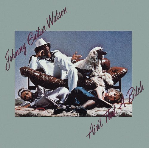 Johnny Guitar Watson - Ain't That A Bitch (CD, Album, RE, RM) - USED