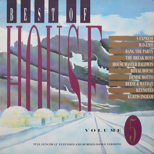 Various - Best Of House Volume 5 (LP, Comp) - USED