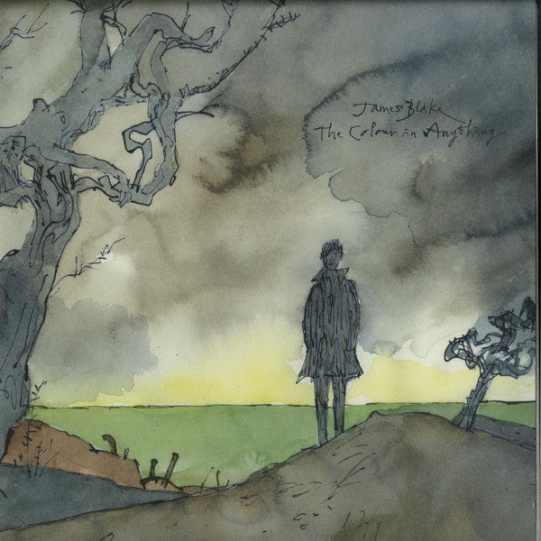 James Blake - The Colour In Anything (2xLP, Album) - NEW