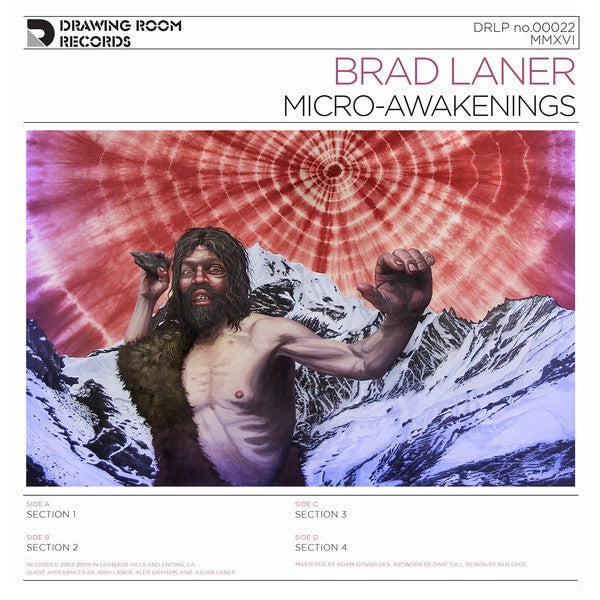Brad Laner - Micro-Awakenings (2xLP) - NEW