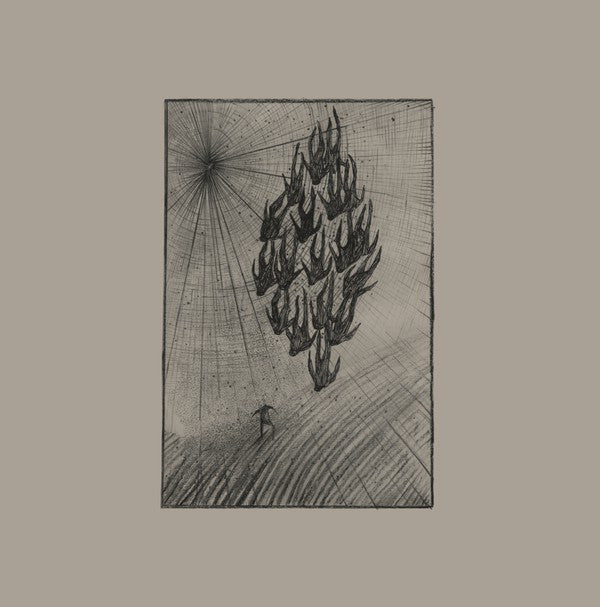 Aine O'Dwyer - Locusts (LP, Album) - NEW