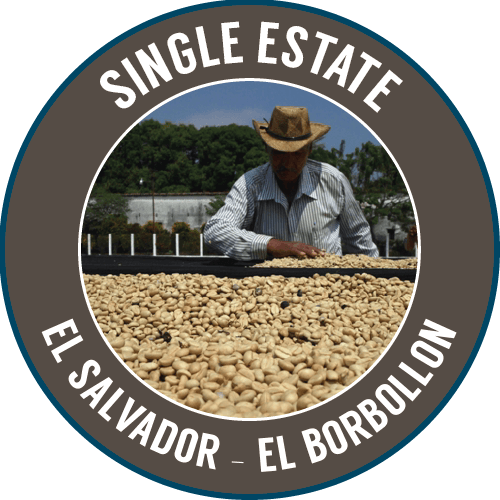 EL SALVADOR: El Borbollon - Single Estate - 100% Arabica - NEW
