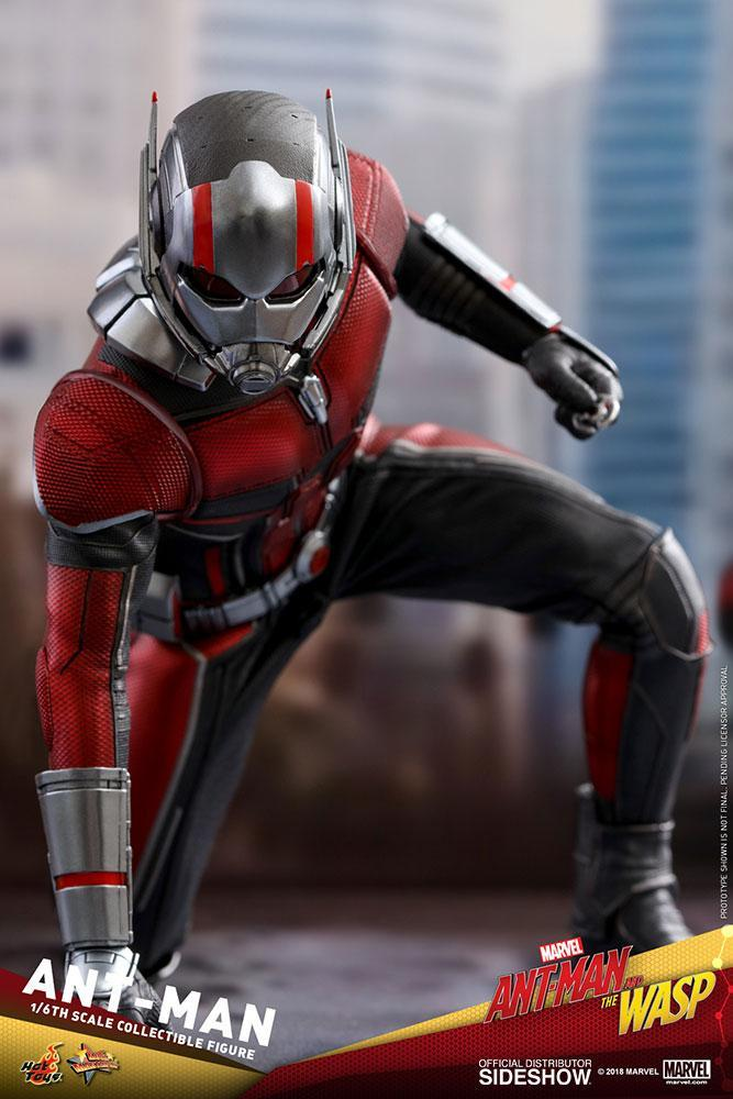 ANT-MAN: ANT-MAN AND THE WASP: MMS497: HOT TOYS