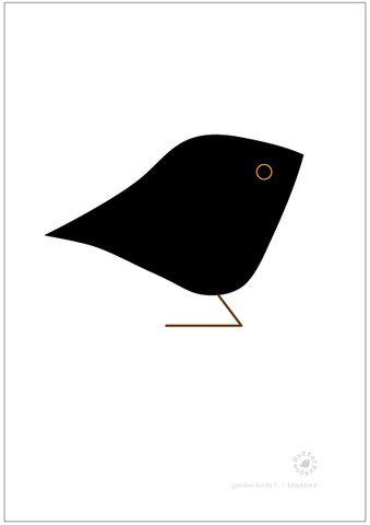 Blackbird. Garden Birds | series 1.