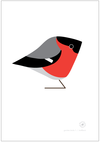 Bullfinch. Garden Birds | series 1.