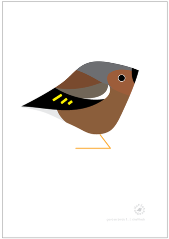 Chaffinch. Garden Birds | series 1.